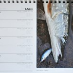4 kalendar stolni 2013 08 600x400 desk calendar