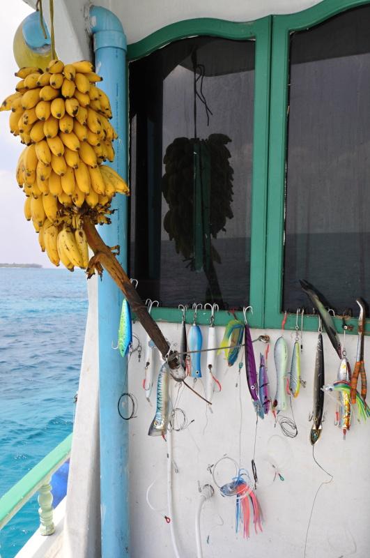 Maledivské zátiší