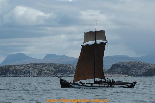 Vikingove c